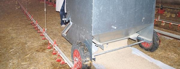 Chariot distributeur de graine poule poussin